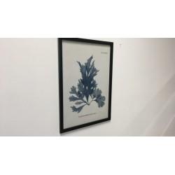 Wandbild mit Rahmen, 54 x 74 cm