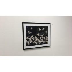 Gerahmtes Wandbild, 62 cm x 52 cm