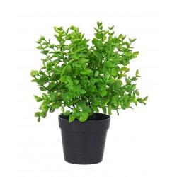 Kunstpflanze Sedum